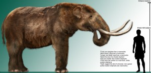 High_res_mastodon_1024g
